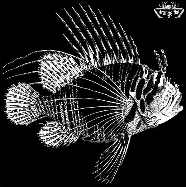 Various Artists — Strange Fish Three