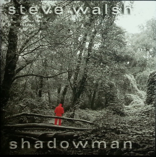 Shadowman Cover art