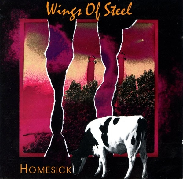 Wings of Steel — Homesick
