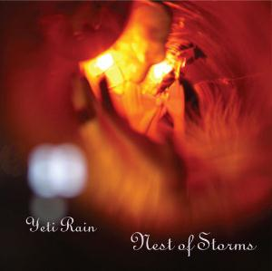 Nest of Storms Cover art